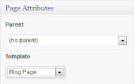 Blog Page With Single Category in WordPress image catblog1