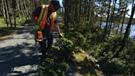 Crews at Rotary Sunshine Park are clearing the trails with chainsaws after Leslie blocked many of them on Tuesday.