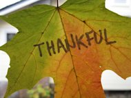 Giving Thanks To Content Marketing image Thankful leaf