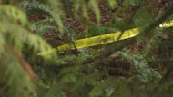 Police tape is strung through the woods marking a path from the road near where Coast Meridian turns into Hazel Avenue in the Burke Mountain area of Coquitlam.