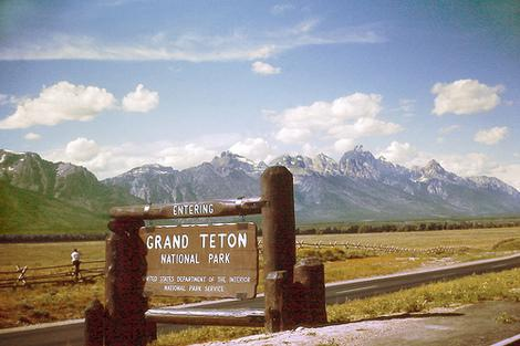 Trails at Grand Teton National Park: Hikes for Scenery and Wildlife