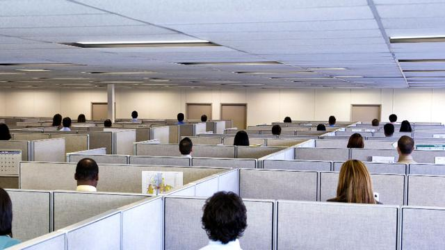 50th anniversary of the cubicle