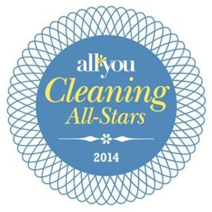 2014 ALL YOU Cleaning All-Stars