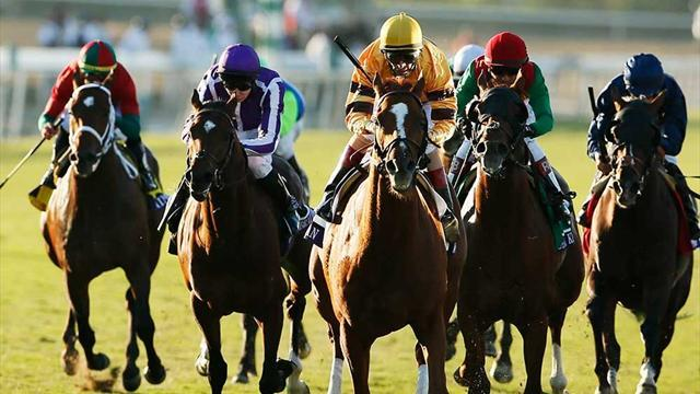 Horse Racing - Breeders' Cup to offer financial incentives
