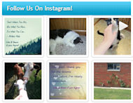 Add An Instagram Widget To Your Blog Without Using A Plugin! image instagram widget script 4