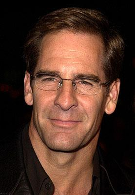 Scott Bakula at the Hollywood premiere of Life as a House
