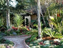 8-ways-to-save-money-on-costly-lawn-care-2-Xeriscape-lg