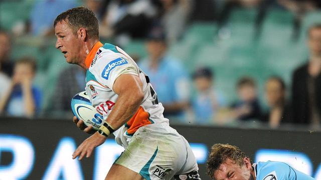 Super Rugby - Cheetahs beat sloppy Sharks in error strewn contest