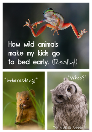 Animal videos are the key to getting kids to bed at night.