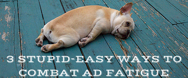 Ad fatigue dog sleeping