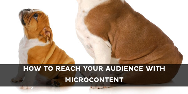 how to reach  your audience with microcontent