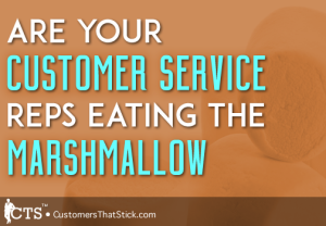 Are You Customer Service Reps Eating the Marshmallow | Picture of Marshmallow | Walter Mischel