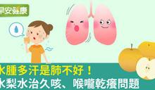 水腫多汗是肺不好!水梨水治久咳、喉嚨乾癢問題