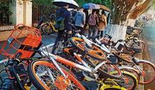 【達觀股市】共享單車倒地 品牌單車再起
