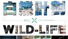 「黑白雙熊」連袂台中,專家帶路搶先看!── 2017挺挺動物聯合展「白熊計劃 x WILD-LIFE」