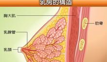 乳癌的四大高危險因子告訴妳 吃對食物能夠遠離它
