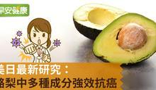 美日最新研究:酪梨中多種成分強效抗癌!