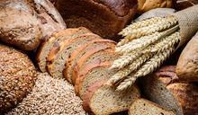 你以為的全麥麵包 並非來自完整的「全麥」