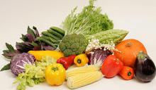 多吃有療癒力的「活食物」 能加強身體自我修復、成長