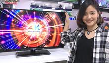 燦坤買滿10萬電視1元 全國電子直播限量價