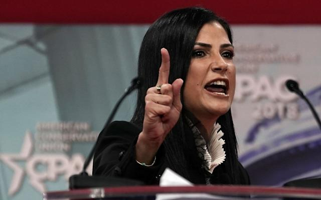 Dana Loesch  - Getty Images North America