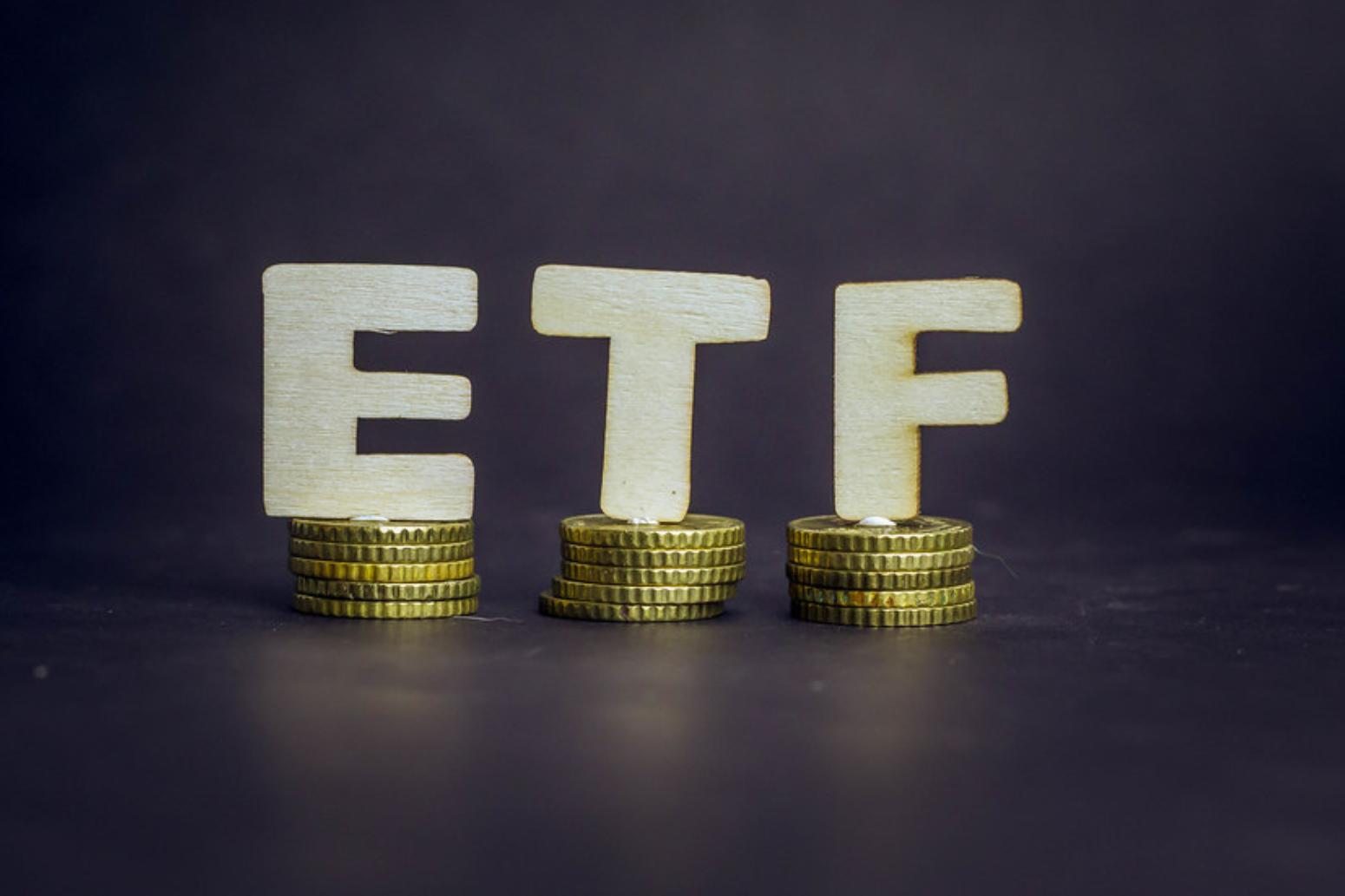 買ETF 別當誤入叢林小白兔