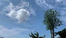 世界重要土木遺產 台南百年日式水道,古蹟景點「山上花園水道博物館」國慶開幕