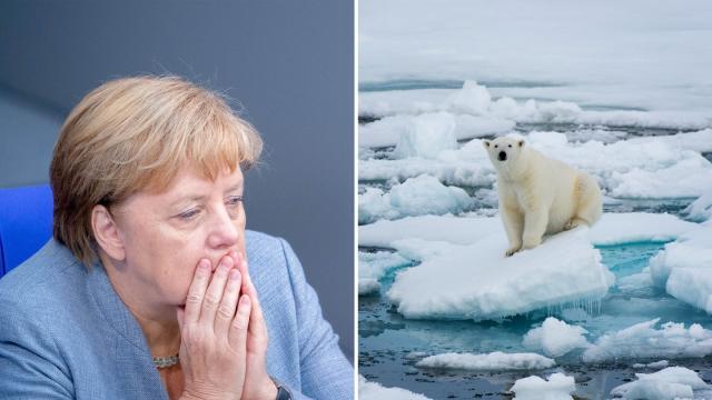 Nicht weil die große Koalition die Mehrheit hat, hat sie so ein schwaches Klimapaket verabschiedet – sondern weil sie sie nicht mehr hat. ©Kay Nietfeld/dpa; Wolfgang Kaehler/LightRocket/GettyImages