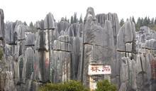 《慢遊中國趣》世界自然遺產中國南方喀斯特:雲南石林