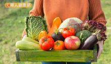 逆轉脂肪肝 營養師5訣竅減少內臟脂肪